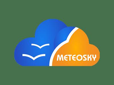 meteosky logo